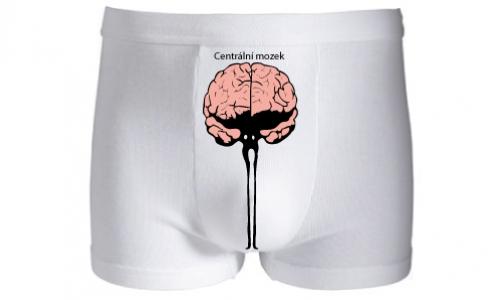 Detail návrhu centrální mozek