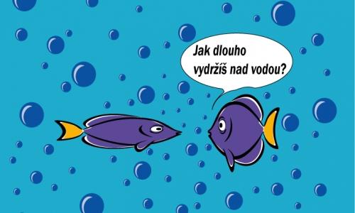 Detail návrhu ryby