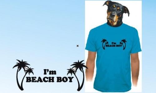 Detail návrhu Beach boy
