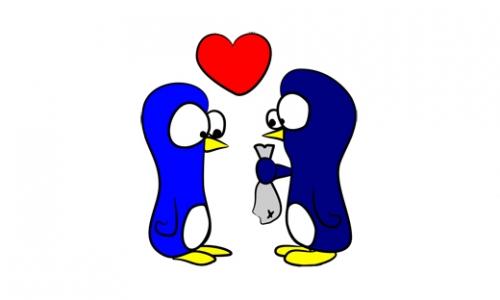 Detail návrhu penguins love