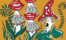 Samé houby :D